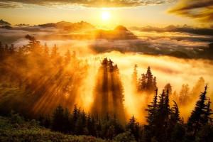 Фотосъемка в «золотой час» – советы экспертов