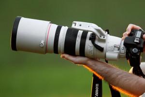 Как правильно фотографировать телеобъективом