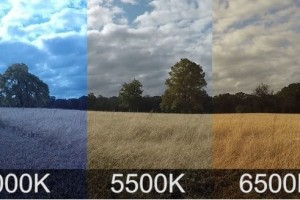 Цветовая температура и баланс белого в фотографии
