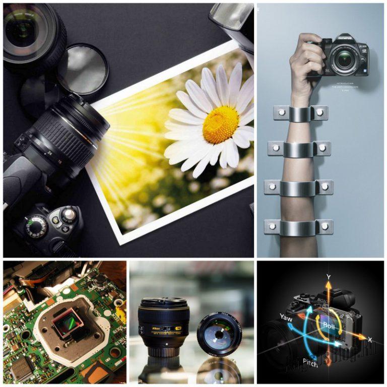 быстрорастущий фотомастерство советы фотографу стала искать