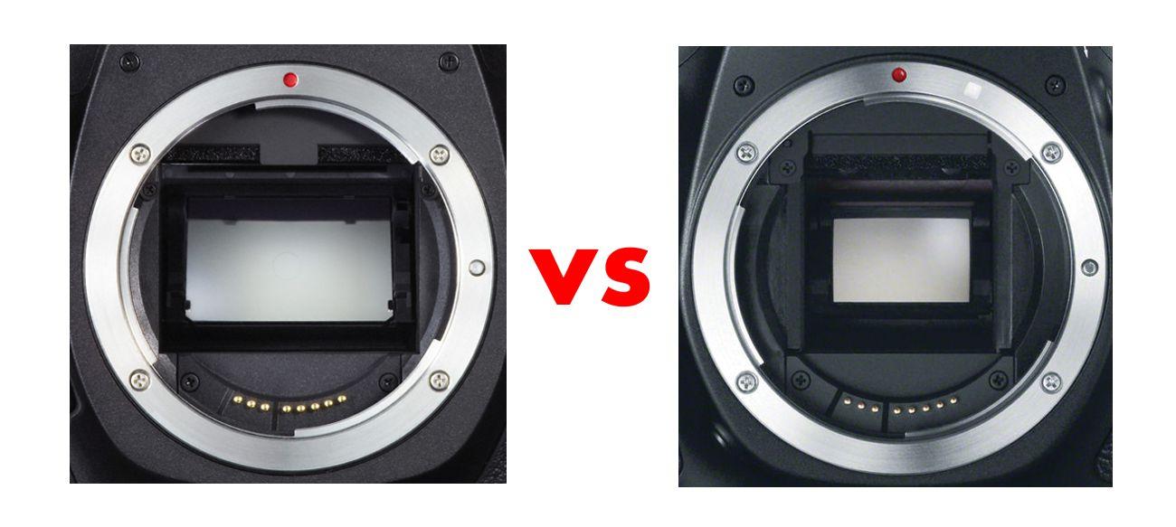 целебных фото на планшете и фотоаппарате разница может