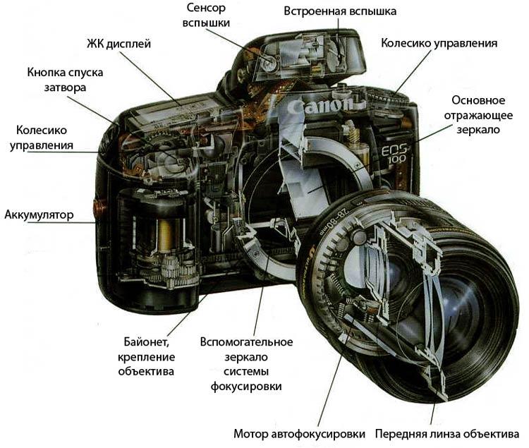 твои принцип работы зеркального фотоаппарата один самых