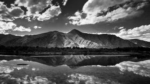 Контрастный черно-белый пейзаж