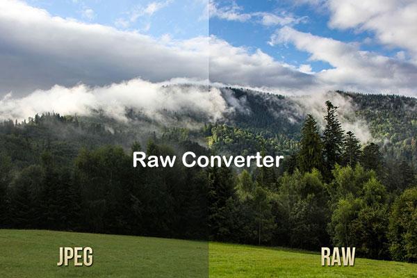 Лучшие RAW конвертеры для обработки фотографий