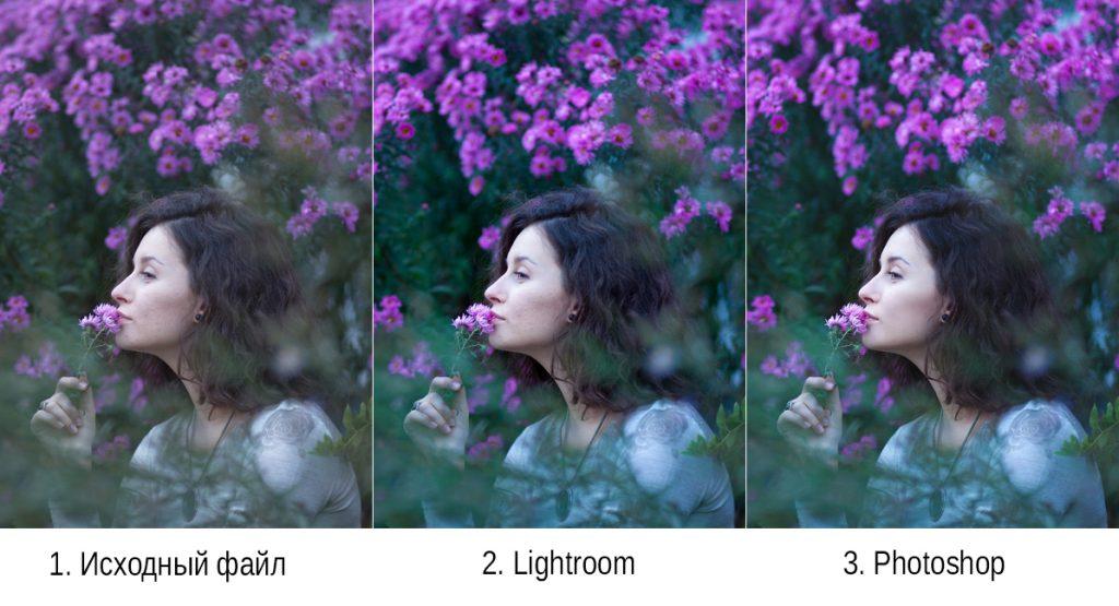 В чем разница между фоторедакторами Adobe Photoshop и Lightroom