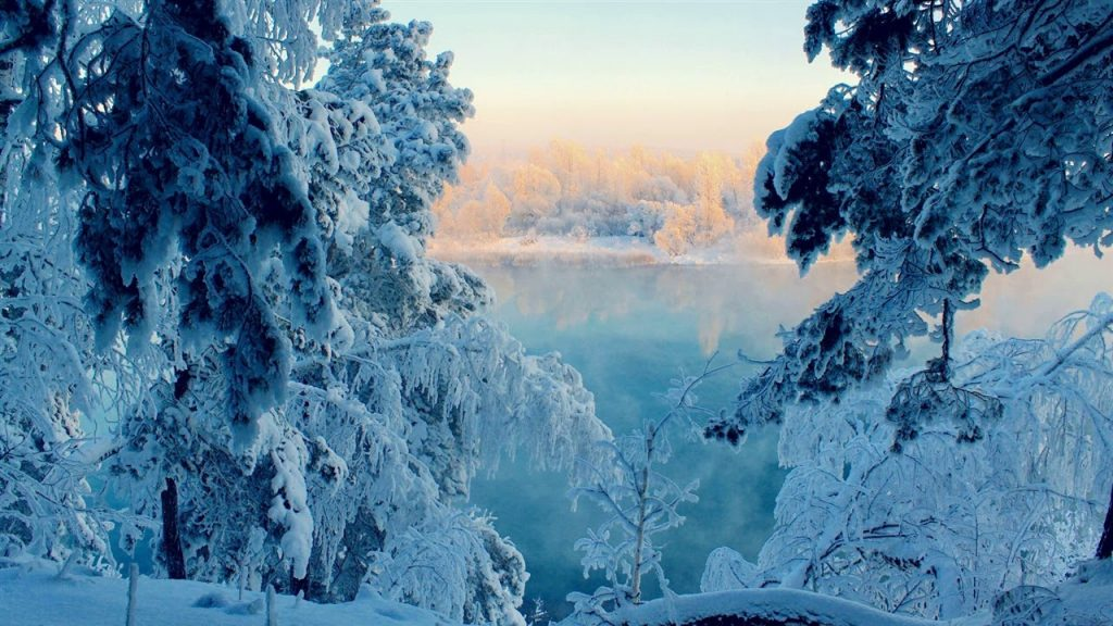 Полезные советы как фотографировать зимой