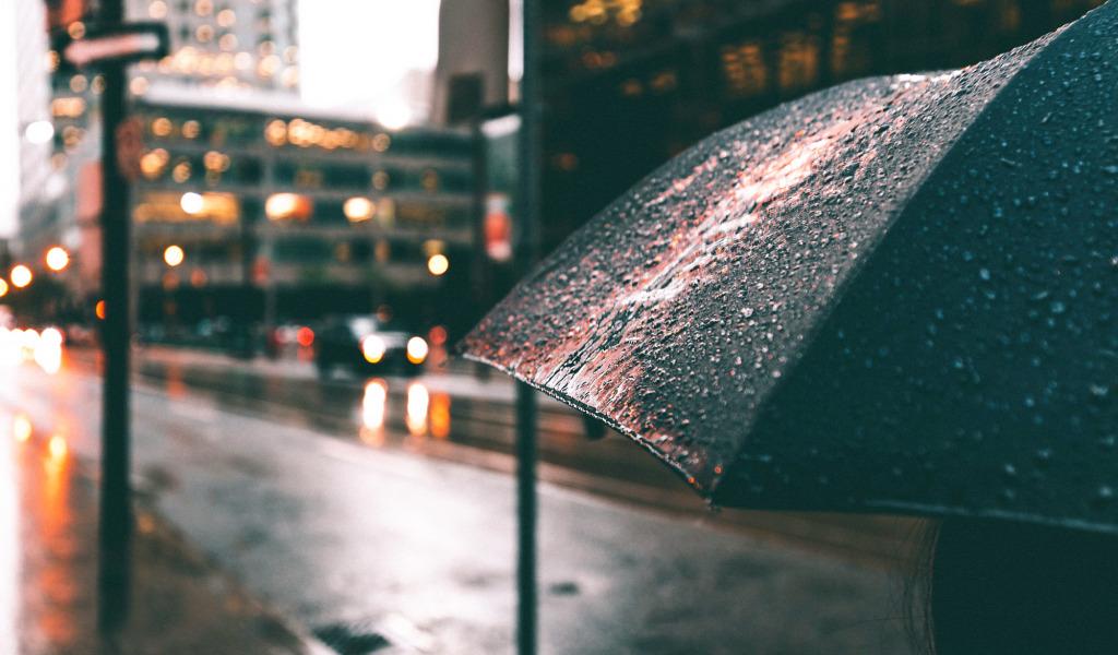 Дождливая и пасмурная погода
